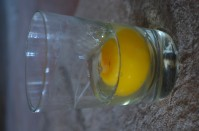 Glass of egg