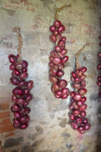 braided red onion